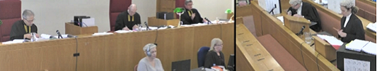 Video image of a court case being live-streamed
